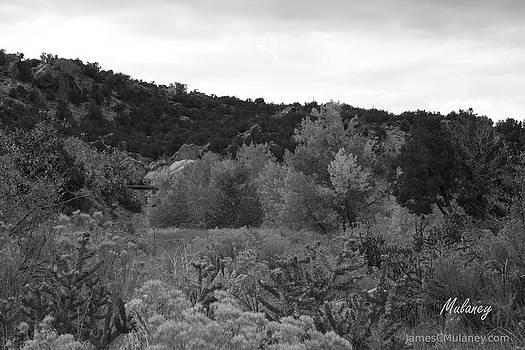 Broken Back Ridge by James Mulaney