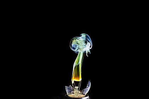 Broken Light Bulb by Kenneth Forland