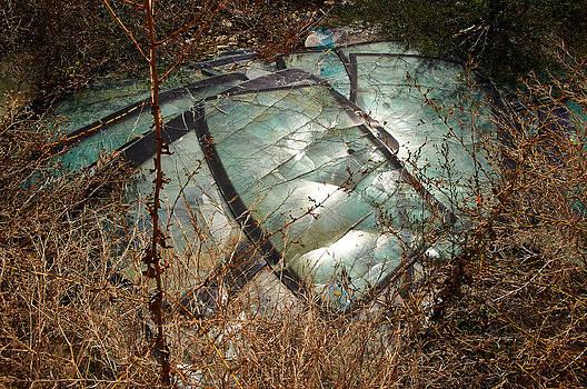 Broken Windscreens by Blaise Pellegrin