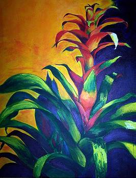 Bromeliad  by Maureen Ghetia