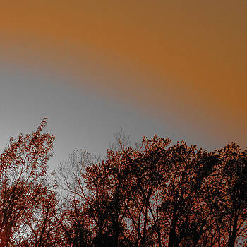 TONY GRIDER - Bronze Sunset