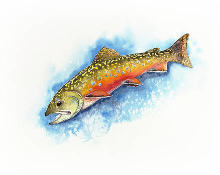 Brook Trout by Joel DeJong