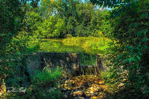 Brookfield Pond by William Reek