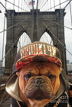 Brooklyn Dog by Dianne Ferrer