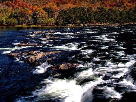 Matthew Winn - Brooks Falls in Autumn cropped