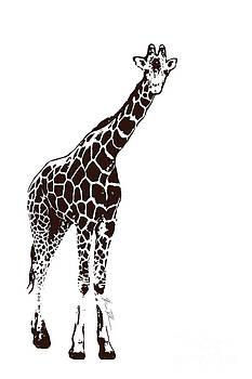 Brown Giraffe by Beauty Balance Design