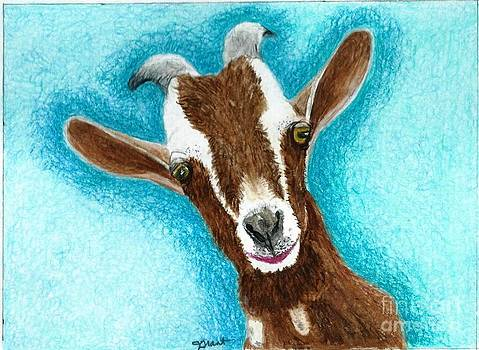 Brown Goat by Jeanne Grant