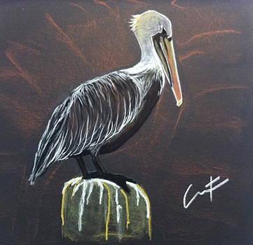 Brown Pelican at Shrimp Dock by Cristel Mol-Dellepoort