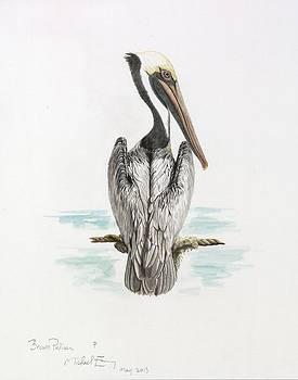 Michael Earney - Brown Pelican