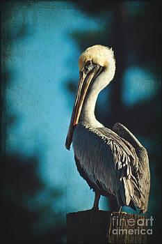 Brown Pelican on a Pole by Joan McCool