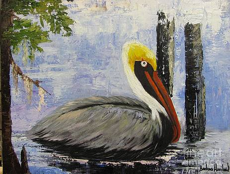 Brown Pelican Revisited by Barbara Haviland