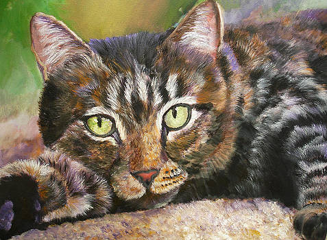 Mary Jo Zorad - Brown Tabby Relaxing