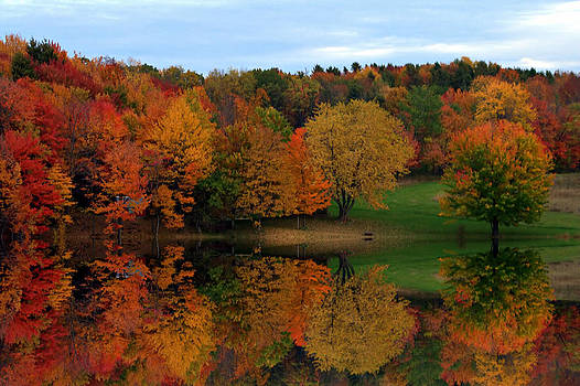 Brown's Pond Reflections by David Simons