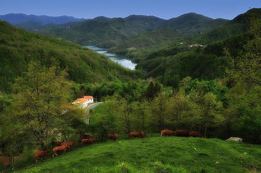 Enrico Pelos - BRUGNETO LAKE WITH COWS OVER BAVASTRELLI