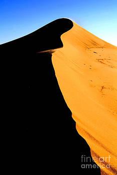 Bruneau Dune by Kari Marttila