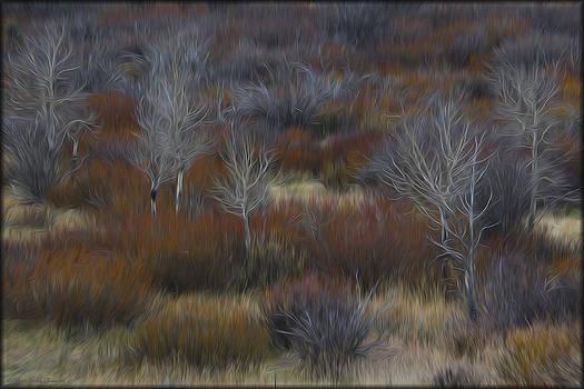 Erika Fawcett - Brush in Oils