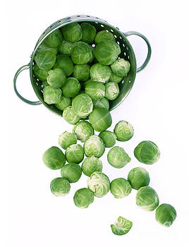 Brussel sprouts spill from colander by Rosemary Calvert