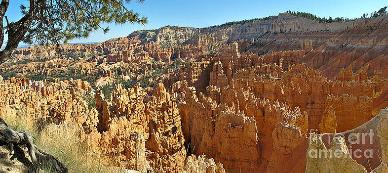 Bryce Afternoon by Jeff Loh