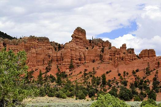 Bryce Canyon by Bill Hosford