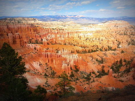 Bryce Canyon by Carrie Putz