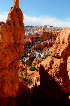 Bryce Canyon Cliff Shot by Marti Green