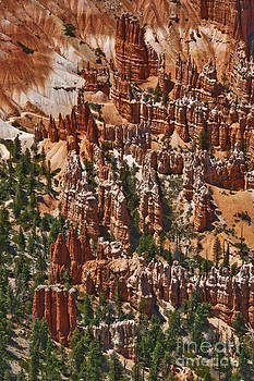 Mae Wertz - Bryce Canyon Hoo Doos