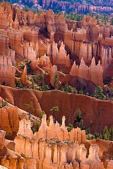 James BO Insogna - Bryce Canyon