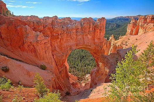 Adam Jewell - Bryce Canyon National Park Arch