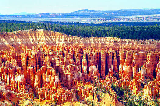 Douglas Taylor - BRYCE CANYON NATIONAL PARK