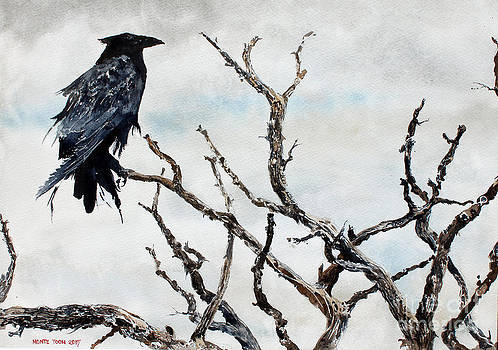 Bryce's Raven by Monte Toon