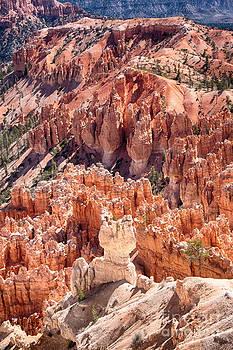 James BO Insogna - Bryce Canyon Utah Views 82