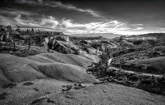 Jeff Burton - Bryce Canyon V