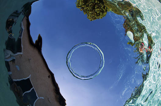 Bubble Ring by Greg Amptman