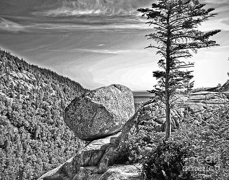 Bubble Rock by Fred L Gardner