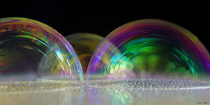 Bubbleonia by Greg Taylor