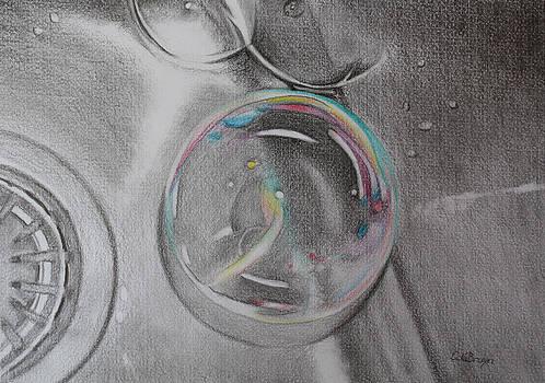 Bubbles in the Sink by Carol De Bruyn