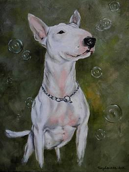 Bubbles by Tony Calleja