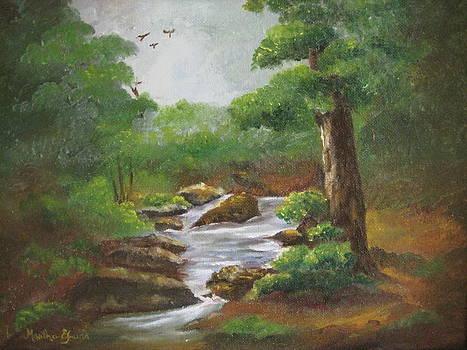 Bubbling Brook by Martha Efurd