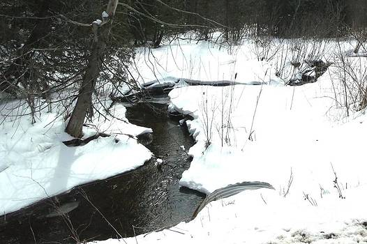 Gail Matthews - Bubbling Creek from Culvert in Spring