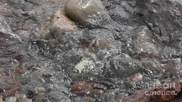 Bubbling Water by John Williams