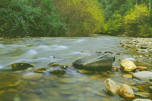 Buckland Valley by Janaka Somaratne