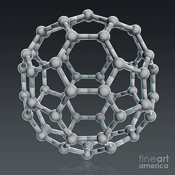 Evan Oto - Buckminsterfullerene Molecular Model