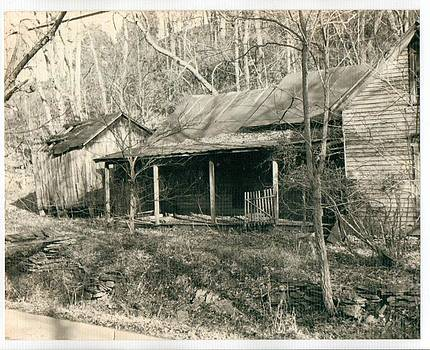Buck's Cabin by Timothy Wilkerson