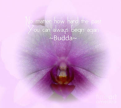 Budda Quote by Eva Thomas