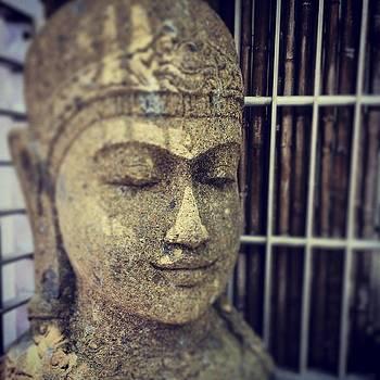 Buddha Head Miami Beach Florida by Bradley R Youngberg