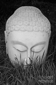 Dave Gordon - Buddha I