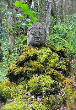 Venetia Featherstone-Witty - Buddha in the Moss Garden