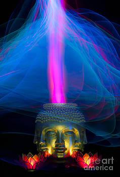 Buddha lotus light painting by Shawn  Bowen