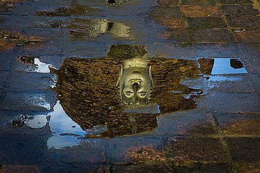 Buddha Reflection  by Duane Bigsby