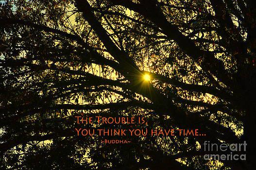 Susanne Van Hulst - Buddha Says...
